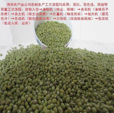 河南郑州中牟县乌兹别克绿豆 袋装 1等品