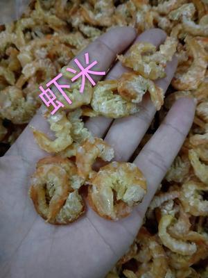 广西北海海城区烤虾干