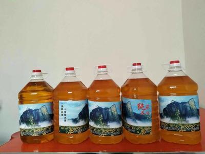 陕西渭南华阴市自榨纯菜籽油 4.5-5L
