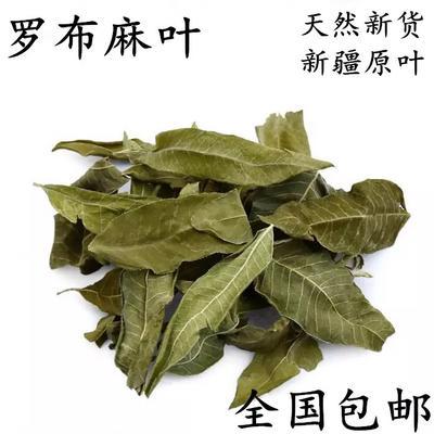 青海西宁城北区罗布麻茶 袋装 1-2年 一级