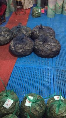 江苏常州金坛市太湖河蟹 2.0两以下 公蟹