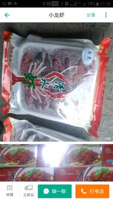 广东广州天河区红壳小龙虾 湖虾 7-9钱