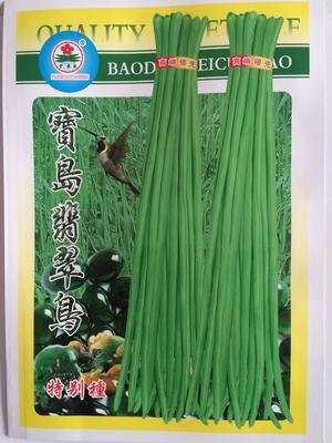 云南昆明官渡区豆角种子 ≥97%