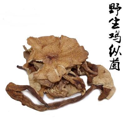 云南昆明盘龙区干鸡枞菌 散装 1年以上