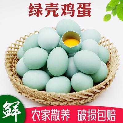 江苏连云港灌云县土鸡蛋 食用 礼盒装