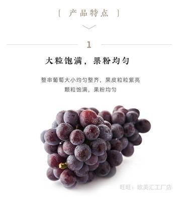 浙江金华浦江县巨峰葡萄 5%以下 1次果 0.4-0.6斤
