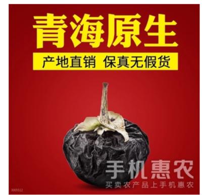 青海西宁城东区黑枸杞 特优级