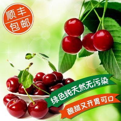 山东潍坊昌邑市红灯樱桃 30mm以上 20g以上