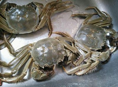 江苏泰州兴化市兴化大闸蟹 2.0两以下 统货