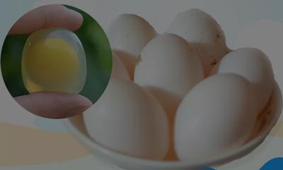 山东省德州市平原县银羽王鸽子蛋 食用 礼盒装