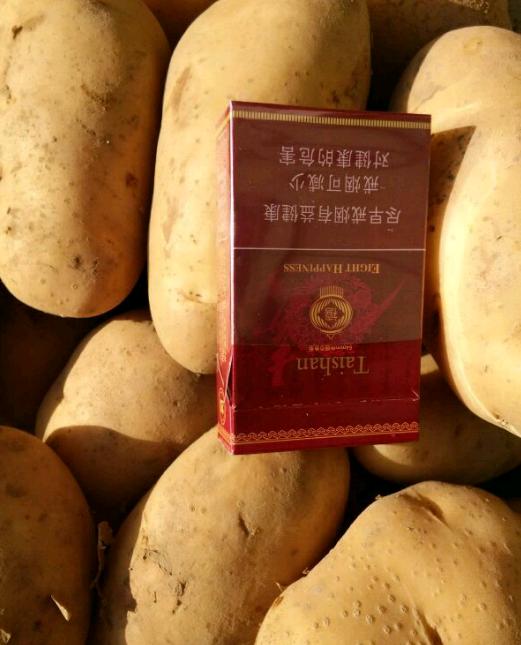 有机土豆 3两以上