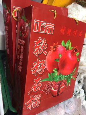 云南省昆明市五华区盐水石榴 0.8 - 1斤