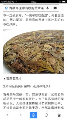 云南省普洱市江城哈尼族彝族自治县普洱茶黄片叶 散装 一级