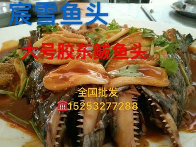 山东省青岛市市北区冻鲅鱼