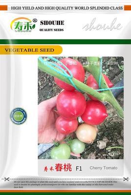 山东省潍坊市寿光市硬粉番茄种子 99% 原种(亲本)