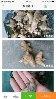 广西壮族自治区桂林市全州县白及
