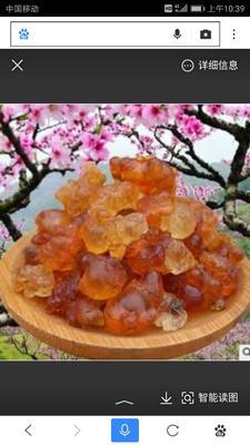 安徽省滁州市琅琊区野生桃胶 24个月以上
