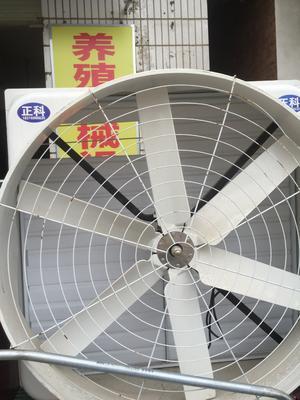 广西壮族自治区南宁市西乡塘区抽风机