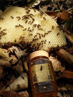 这是一张关于荔枝蜜 桶装 100% 2年以上的产品图片