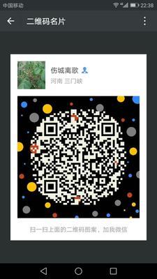 河南省三门峡市灵宝市核桃树种子