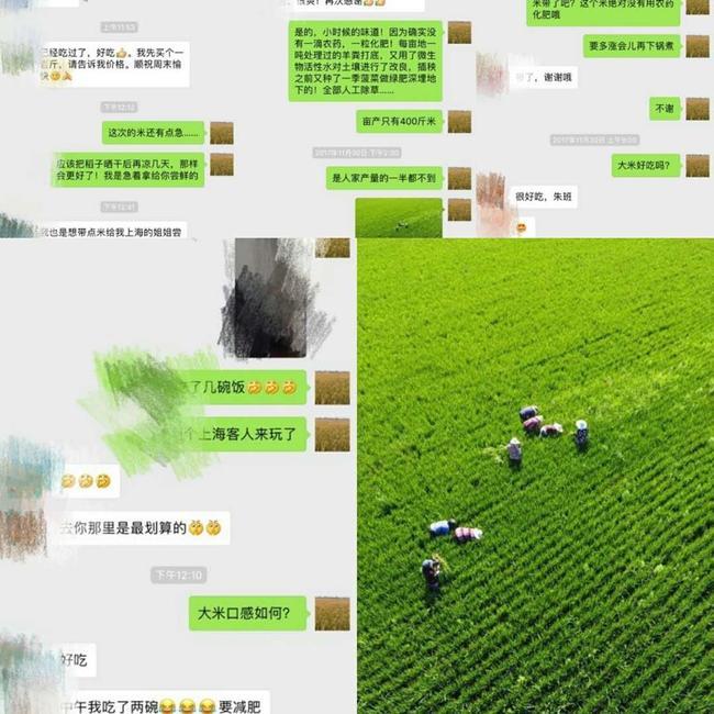 南粳5055大米 非有机大米 中稻 一等品
