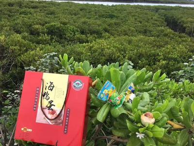 广西壮族自治区钦州市钦南区广西海鸭蛋 礼盒装