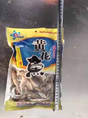 山东省滨州市滨城区小黄鱼 野生 0.5公斤以下