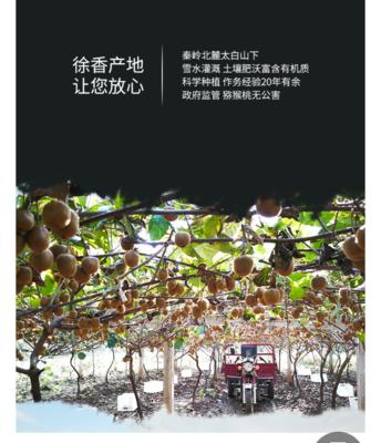 安徽省宿州市萧县徐香猕猴桃 60克以下