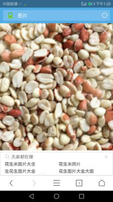 河南省南阳市唐河县白沙系列花生 干货 花生米