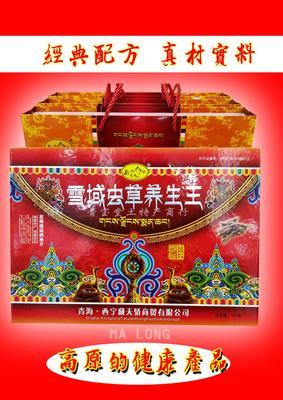 青海省西宁市城东区灵芝泡酒料