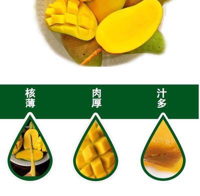 这是一张关于甜心芒 4两以上的产品图片