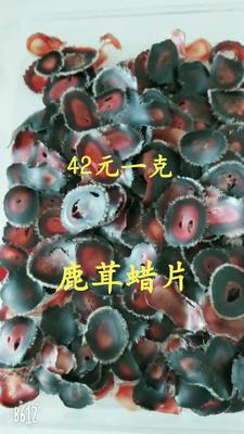 吉林省长春市双阳区梅花鹿鹿茸蜡片