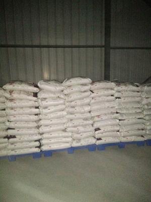 辽宁省沈阳市和平区东北大米 非有机大米 中稻 二等品