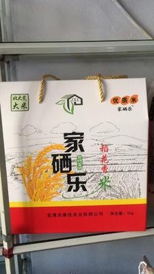 黑龙江省双鸭山市宝清县富硒大米 非有机大米 中稻 一等品