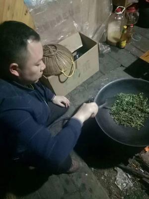 广西壮族自治区柳州市融安县野生藤茶 袋装 特级
