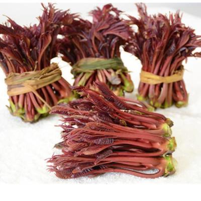 陕西省汉中市镇巴县红油香椿芽 露天种植 箱装 一级