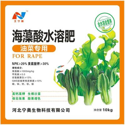 河北省石家庄市长安区南方油白菜 3~4两
