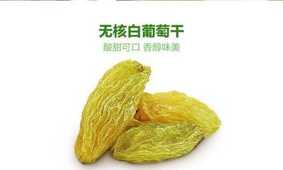 甘肃省张掖市甘州区无核白葡萄干 优等
