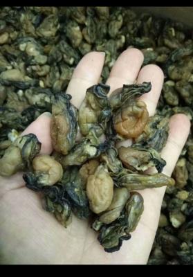广东省深圳市福田区牡蛎肉
