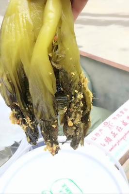 广东省广州市荔湾区酸菜