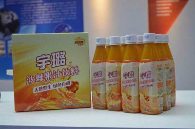 河北省石家庄市桥西区沙棘汁 塑料瓶 12-18个月