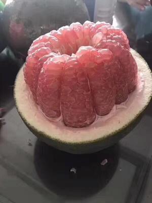泰国青柚 越南翡翠蜜柚2个装