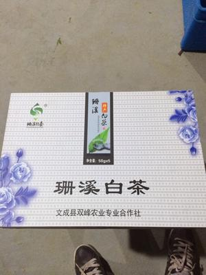 浙江省温州市文成县新工艺白茶 礼盒装 特级