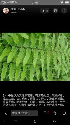重庆彭水苗族土家族自治县生态草鱼 野生 1-1.5龙8国际官网官方网站