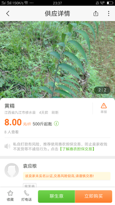 贵州省黔东南苗族侗族自治州台江县黄精