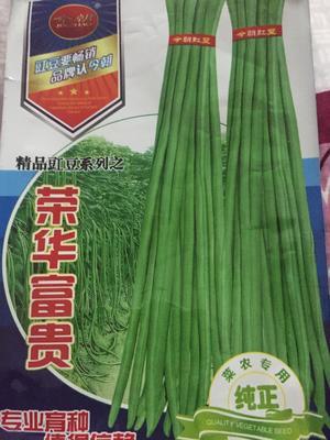 江西省南昌市南昌县豆角种子 ≥95%