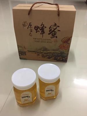 广东省汕头市澄海区荔枝蜜 塑料瓶装 100% 2年