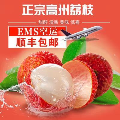 广东省茂名市高州市白糖罂荔枝 2cm