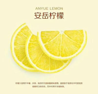 广东省深圳市龙岗区尤力克柠檬 2 - 2.6两