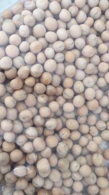 天津滨海新区干白豌豆